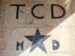 TCD vestibule vestige